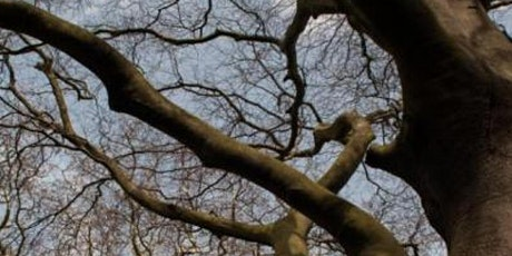 Winter Tree ID at Redgrave & Lopham Fen (EWC 2806) tickets