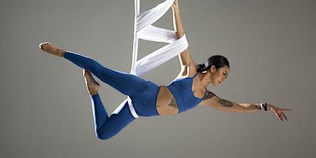 15-Hour Aerial Yoga Teacher Training tickets