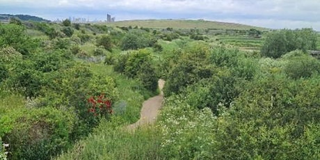 ABM &  Mindfulness of Science on our doorstep at Rainham Marshes RSPB tickets