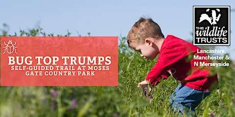 Bug Top Trumps - Moses Gate Country Park, Bolton tickets