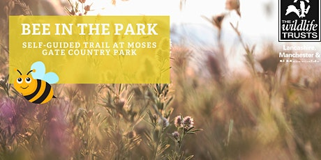 Bee in the Park - Moses Gate Country Park, Bolton tickets
