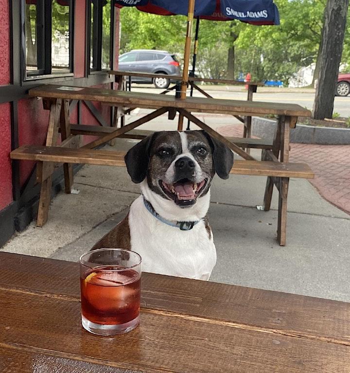 Barkamor 2.0: Baramor's Dog-Focused Charity Fundraiser Pop-Up! image