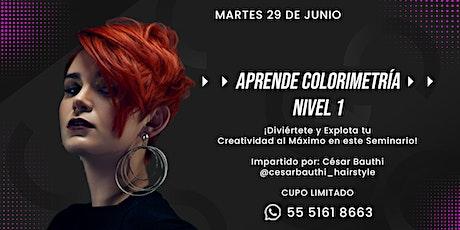CURSO BÁSICO DE COLORIMETRÍA NIVEL 1 boletos