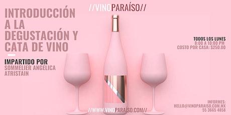 Introducción a la Degustación y Cata de Vino - Curso de Nivel Básico entradas