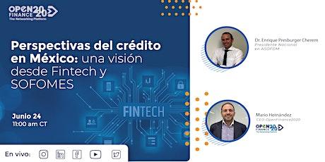 Perspectivas del crédito en México: una visión desde Fintech y SOFOMES. tickets