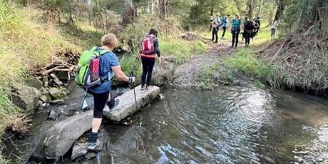 UPWEY, VIC: Nature walk and cuppa tickets