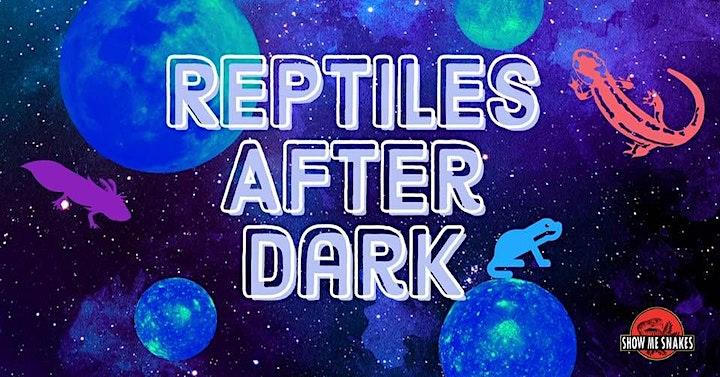 Show Me Reptile & Exotics Show Jacksonville image
