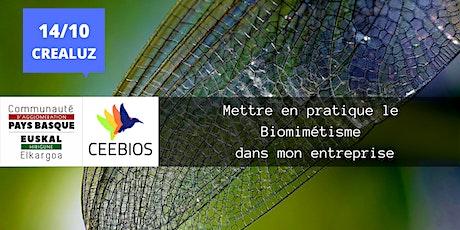 [Master Class # 2 ] Mettre en pratique le biomimétisme dans mon entreprise entradas