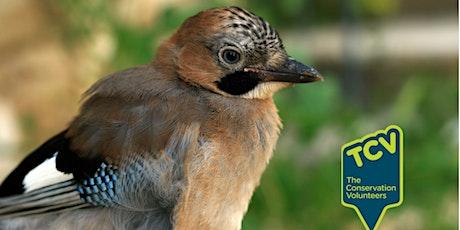 Bird Survey Workshop - The Paddock Community Nature Park tickets