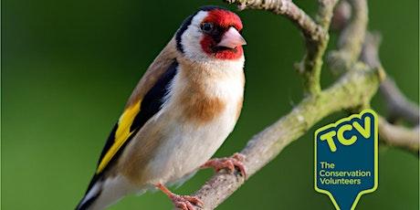 Bird Survey - The Paddock Community Nature tickets