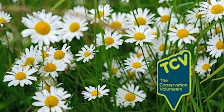 Plant  Surveying Workshop - The Paddock Community Nature Park tickets