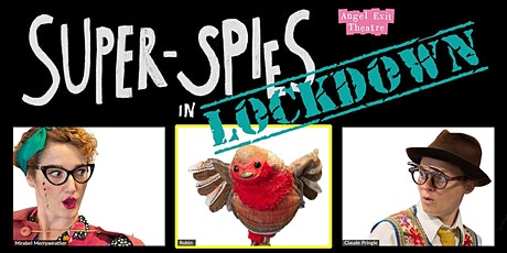 Super Spies online  & at Dorman Museum Middlesbrough tickets