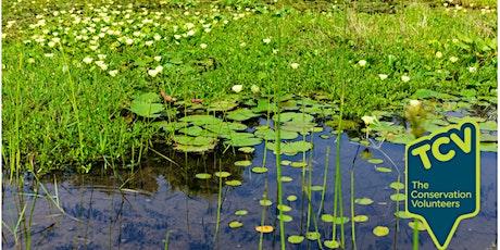 Pond Survey - The Paddock Community Nature Park tickets