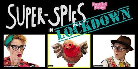 Super Spies online  & at Kirkleatham Museum Redcar tickets