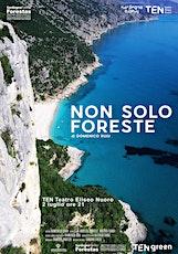 NON SOLO FORESTE di Domenico Ruju biglietti