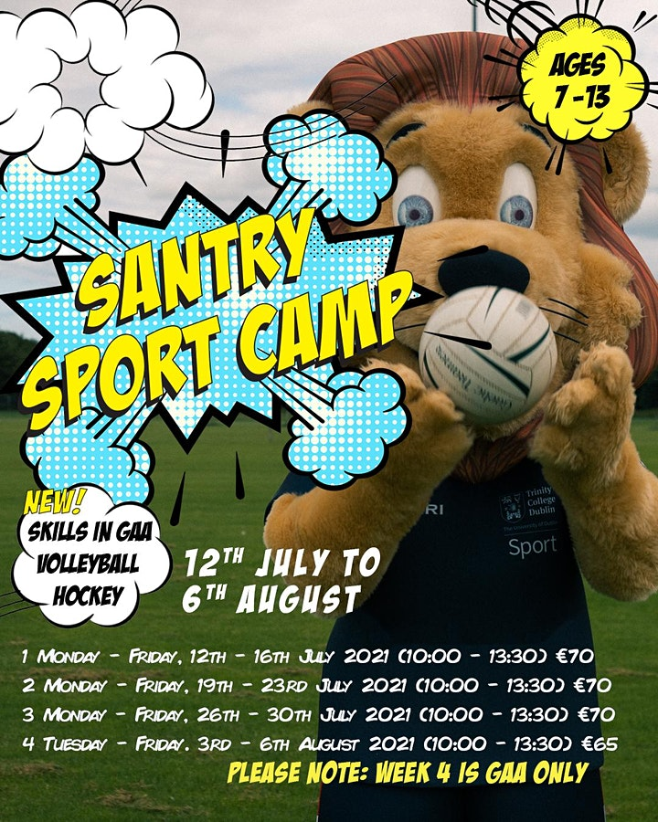 Santry Summer Camp 2021 image