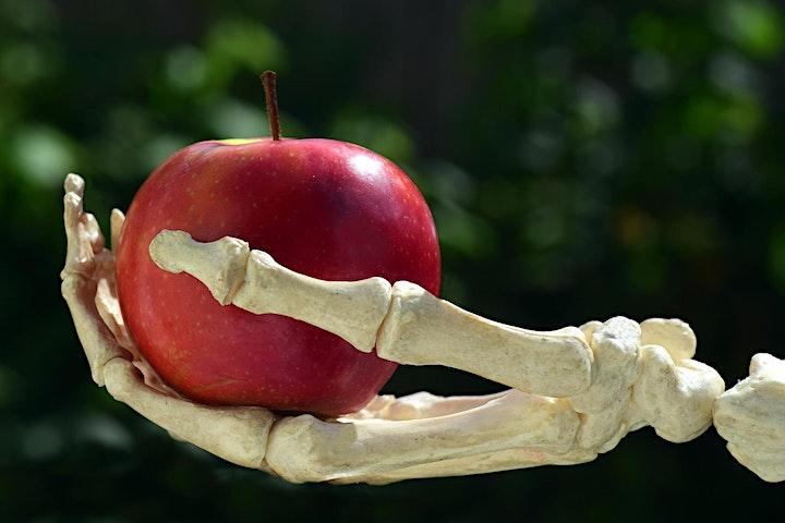 [POSTPONED] Virtual PubSci | Dr Anna Morgan - Toxins: Friend or Foe? image