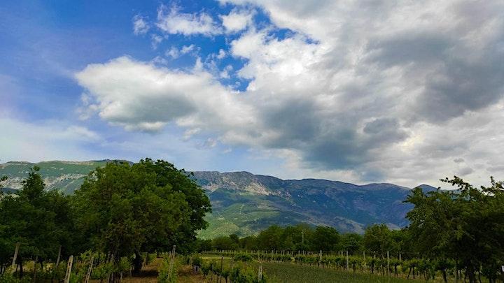 Immagine Degustazione Vini Peligni alle pendici del monte Morrone