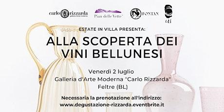 Estate in villa: alla scoperta dei vini bellunesi. biglietti