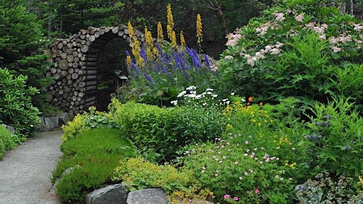Virtual Garden Presentation of MUN Botanical Garden image