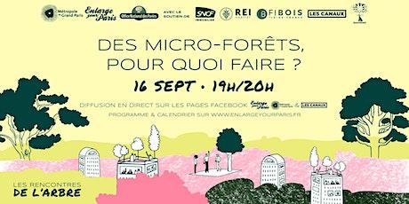 Des micro-forêts, pour quoi faire ? billets