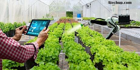 Develop a Successful GreenTech / CleanTech Startup Business Today! billets