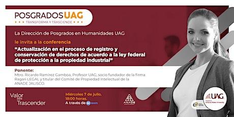 """""""Actualización en el proceso de registro y conservación de derechos """". entradas"""