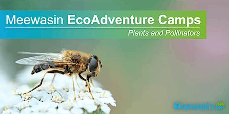 Meewasin EcoAdventure Camps - Plants & Pollinators tickets