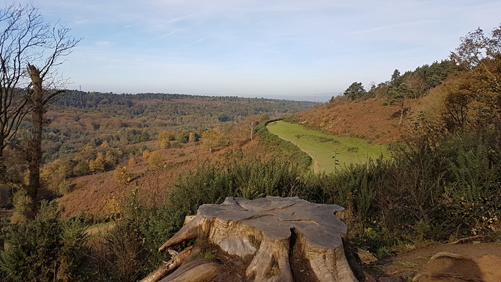 The Greensand Way - Haslemere to Shamley Green image