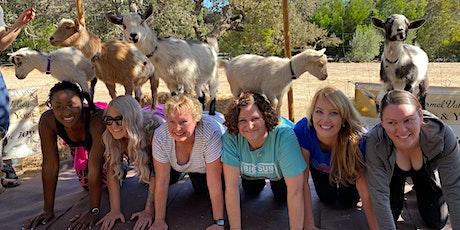 Carmel Valley Goats & Yoga 2021 tickets