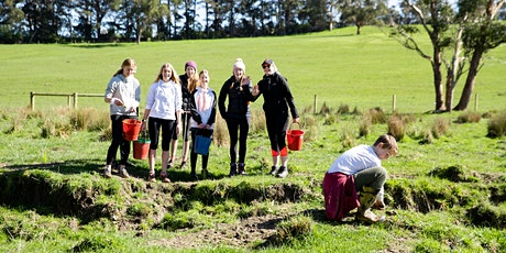 TUROSI Tree Planting Day tickets