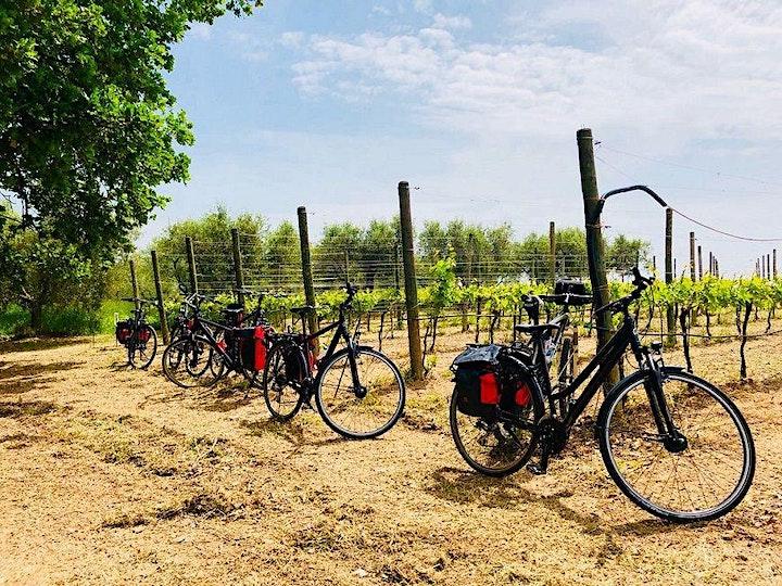 Hai voluto la bicicletta… assistita!!! image