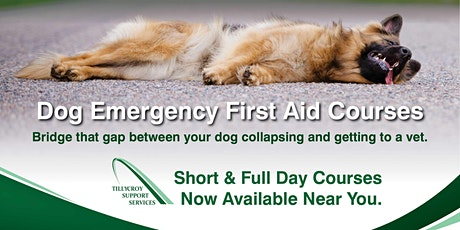 ITC First Aid for Dogs tickets