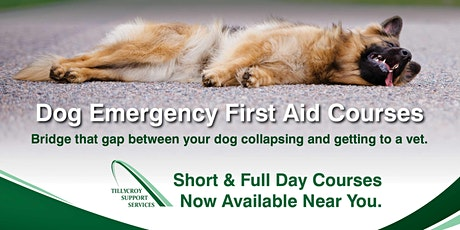 ITC Emergency First Aid for Dogs tickets