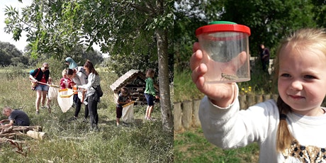 Wild & Free Summer Activity - 'We're going on a bug-hunt' (minibeast hunt) tickets