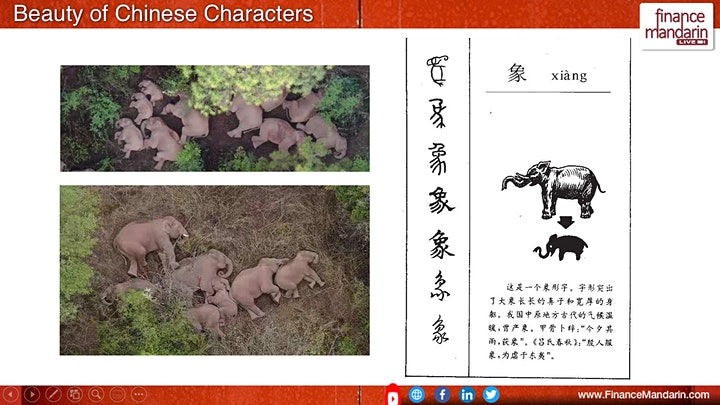Finance Mandarin The Beauty of the Chinese Characters image