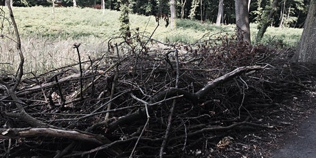 Dead Hedge Day: an opportunity for volunteers to build wildlife habitats tickets