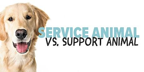 Service Animal vs. Support Animal tickets