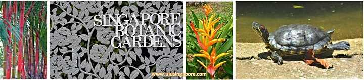 Garden in a City - Singapore Botanic Gardens Stroll image