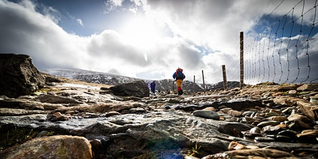 Guided Walking Day - UK Wide - Date to Suit tickets