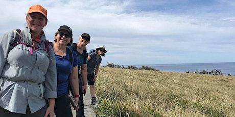 Women's Otford Coastal Hike // Saturday 2nd October tickets