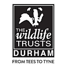 Durham Wildlife Trust logo