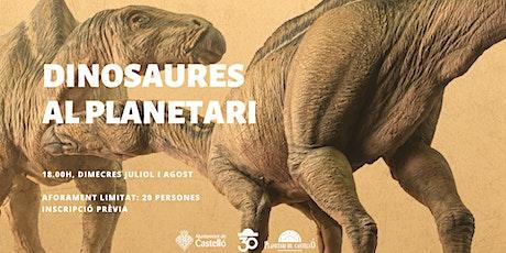 """Planetaller Infantil Planetari """"Dinosaures: Amb una vela a l'esquena"""" entradas"""