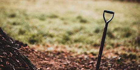 Volunteer to create Charlton Park Wildlife Meadow tickets
