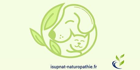 Initiation à l'approche de la naturopathie animale billets