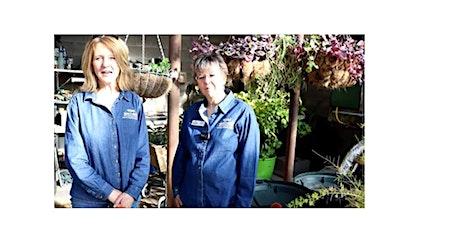 Greenhouse Tour Video--Nancy Donovan tickets