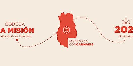 MENDOZA CONCANNABIS entradas