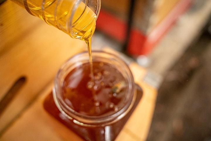 the AB(ee)C of Beekeeping! image