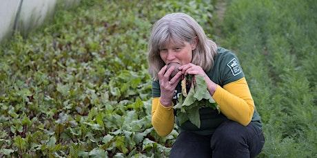 Workshop: Eten uit de tuin aug tickets