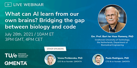 Neuro AI. Bridging the gap between biology and code tickets